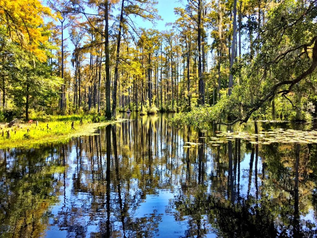 Cypress Garden South Carolina